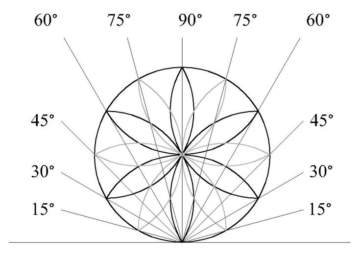 The daisy wheel is a geometrical symbol used by medieval builders to set out buildings and carpentry. It can be used to create angles and transfer complicated proportions, without the need for plans with dimensions, to craftsmen who were often highly skilled but illiterate.