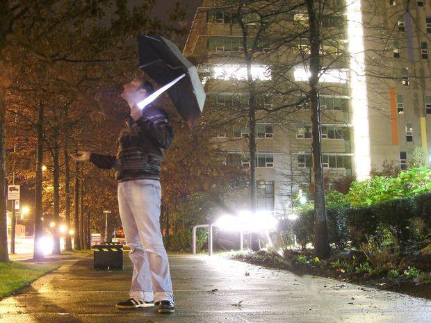 Picture of umbrella light posted by Redlandspoodles.com