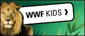 Ik had er geen idee van dat er zoveel materiaal bestond vanuit WWF. Als ik ooit in wero werk rond het mileu, zal ik zeker proberen om aan dit materiaal te geraken. Ik heb het niet allemaal kunnen bekijken, maar wat ik ervan zag, ziet er zeer motiverend en op het niveau van de kinderen uit.