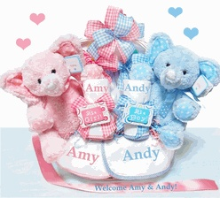 32 best twins baby gifts images on pinterest twin baby boys twin double blessings for twins bbc41 baby shower basketsbaby gift negle Image collections