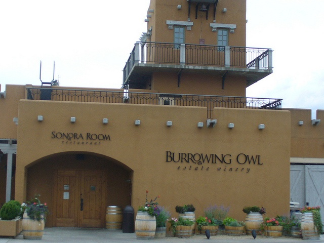 Burrowing Owl Winery in the Okanagan Valley. Had a fantastic meal here on the back deck of the restaurant looking over the vineyards. Thanks Brian, for a great time!