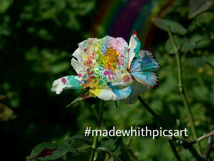 #PicsArt #rainbow #butterfly