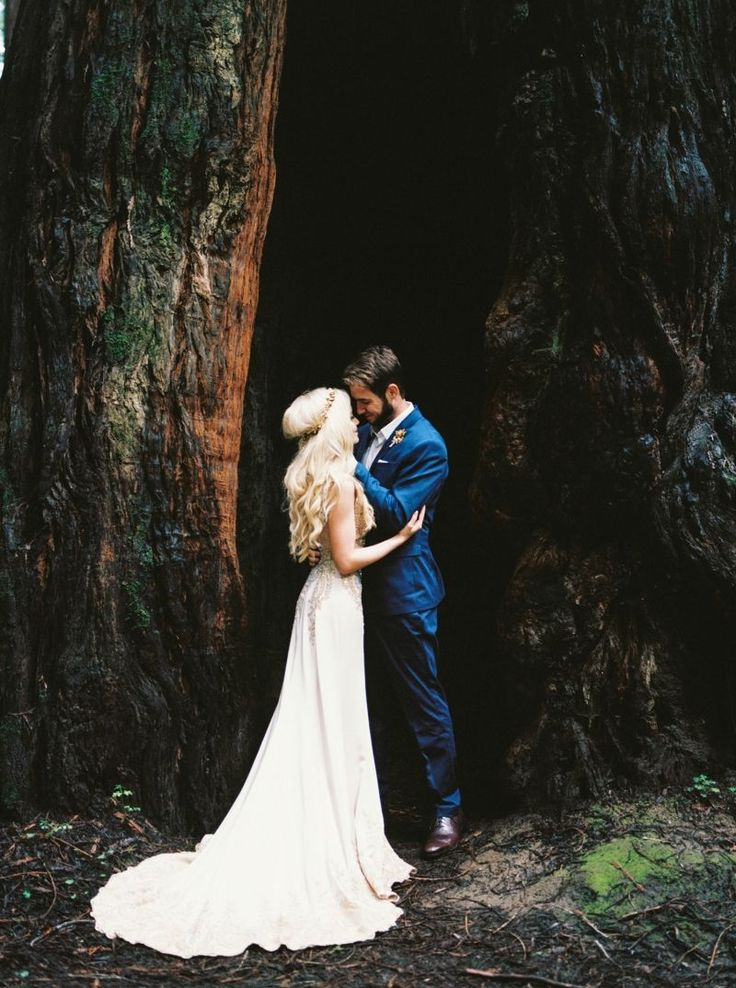 1000 images about beautiful wedding on pinterest 2015 for Wedding dresses northern california