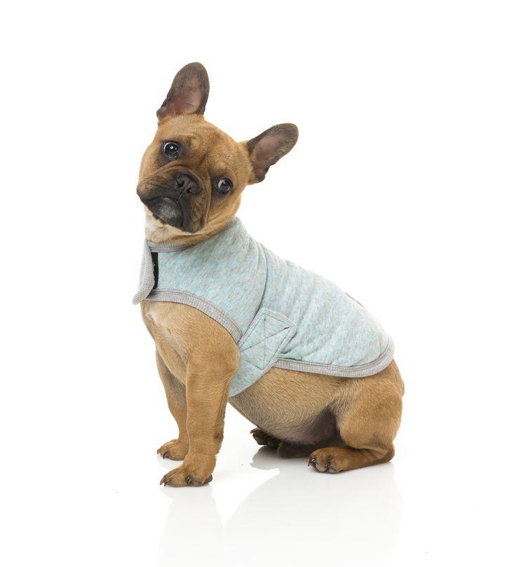 Grey with Blue Dots Wrap Vest