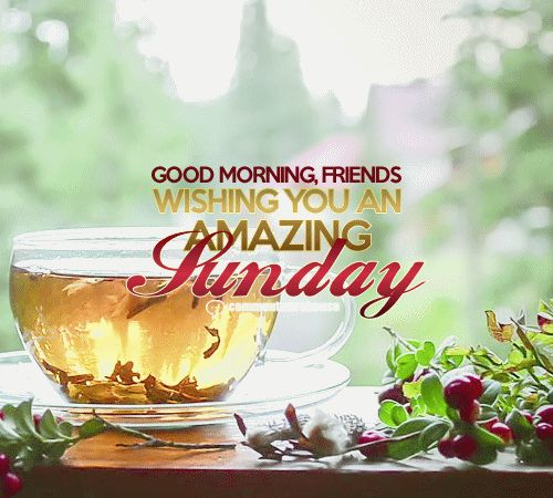 Good morning friends wishing you an amazing Sunday | Sunday graphics pics images quotes good day Sunday greeting - more graphics at commentwarehouse.com
