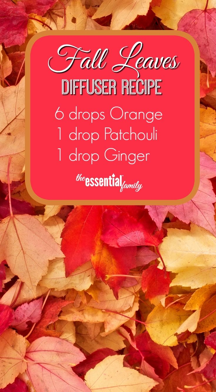 These spicy, comforting, and inspiring fall diffuser recipes are the perfect partner for the cooler weather, plus FREE Printable.