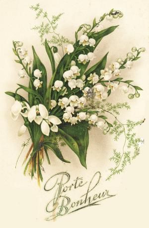 Vintage Postcard ~ Lily of the Valley