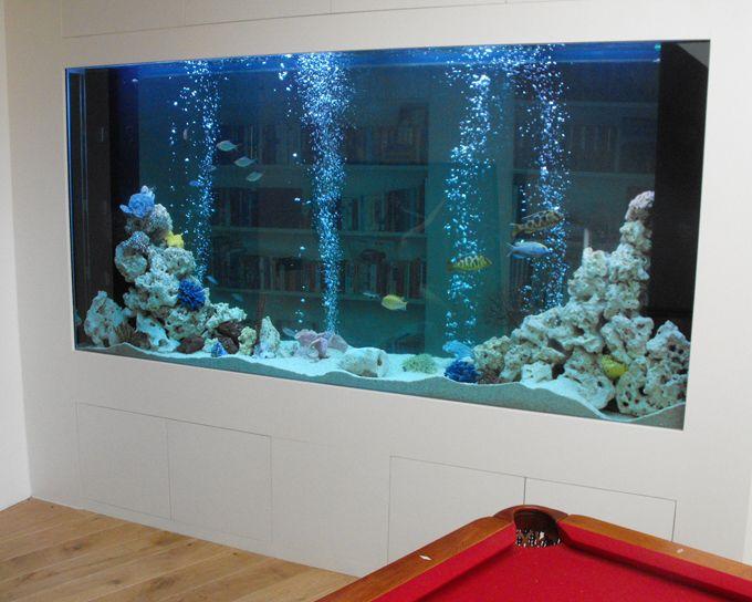 27 Best Aquarium Images On Pinterest | Fish Aquariums, Aquariums