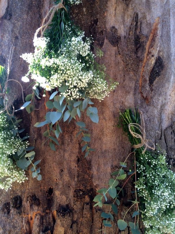 At the ceremony... #ivyandmoss #eventstyling #flowers #treetrunk #ceremony #tree #babysbreath #wedding #country