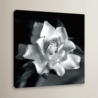 "Rosalind Wheeler Gardenia Photographic Print on Wrapped Canvas Size: 14"" H x 14"" W x 2"" D"