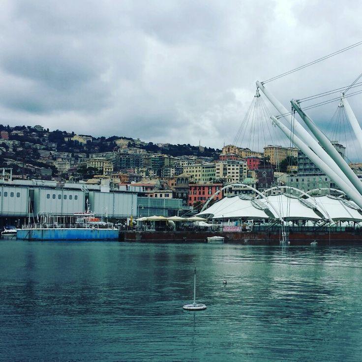 Genova. #zena