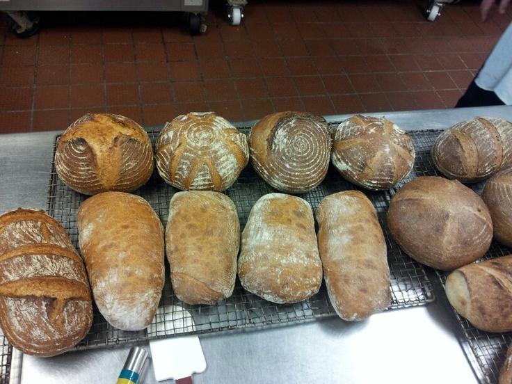 Rustic Style Breads! Sourdough, Ciabatta, & Whole Wheat Sourdough!