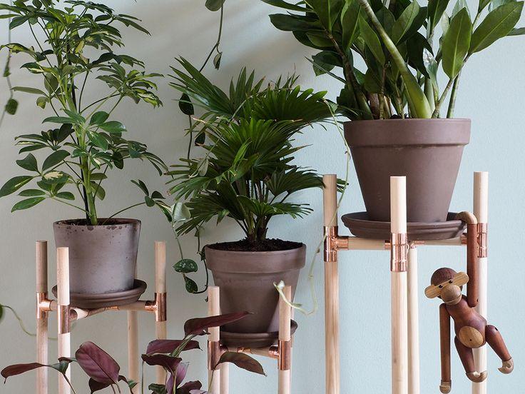 die besten 17 ideen zu indoor pflanzenst nder auf. Black Bedroom Furniture Sets. Home Design Ideas