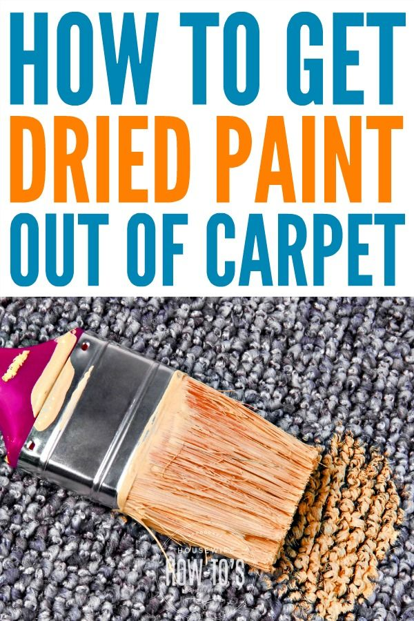 How To Get Dried Paint Out Of Carpet Diy Carpet Stain Remover