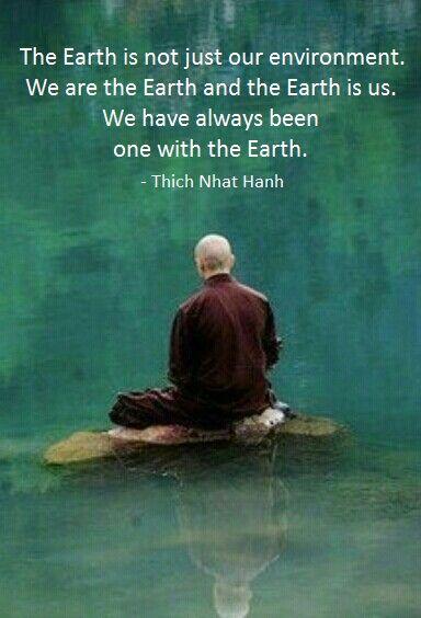 Image result for images zen walking earth