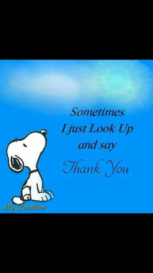 Look up and say thank you Snoopy blessings!!..