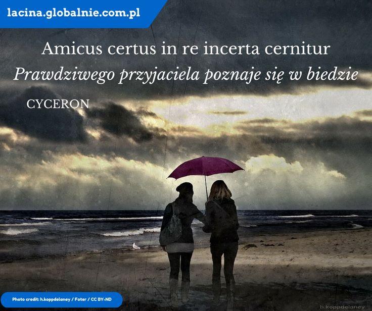 """Sentencja łacińska o przyjaźni: """"Amicus certus in re incerta cernitur"""" - """"Prawdziwego przyjaciela poznaje się w biedzie.  #łacina #językłaciński #sentencjełacińskie #cytaty #złotemyśli #łacinaonline"""