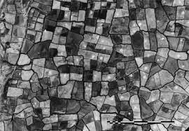 Αποτέλεσμα εικόνας για field patterns