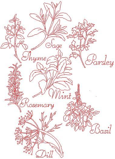 Advanced Embroidery Designs - Herb Redwork Set