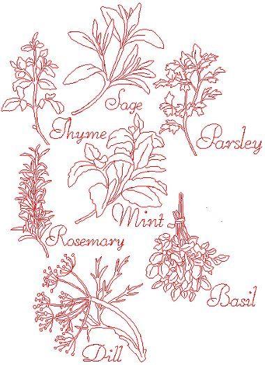 25 Basta Herb Embroidery Ideerna Pa Pinterest