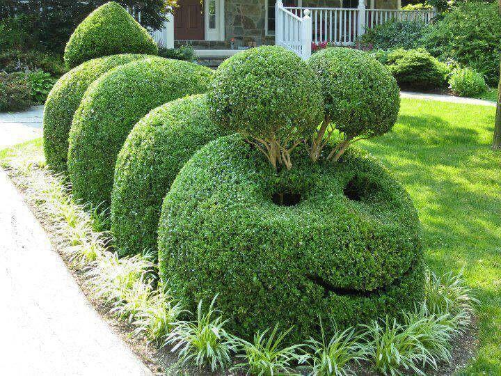 Cute Caterpillar makes me smile Plant Sculpture Topiary Art Garden
