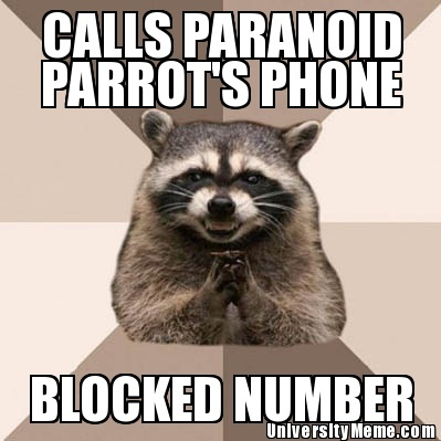 Google Image Result for http://www.universitymeme.com/saved/38981183-evil-plotting-raccoon-calls-paranoid-parrots-phone.jpg