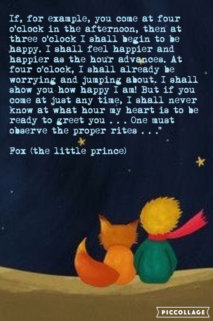 Little Prince Love Quotes The 40 Best Images About Little Prince On Pinterest  First Tattoo