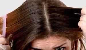 elimine-a-oleosidade-capilar-aplicando-tapioca-no-couro-cabeludo