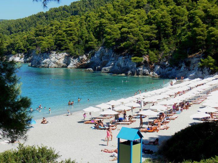 SPIAGGIA KASTANI (Skopelos) - Spiaggia ampia e di sabbia chiara, bagnata da un bel mare limpido, circondata da vegetazione ed orlata da alberi che regalano una piacevole ombra naturale.