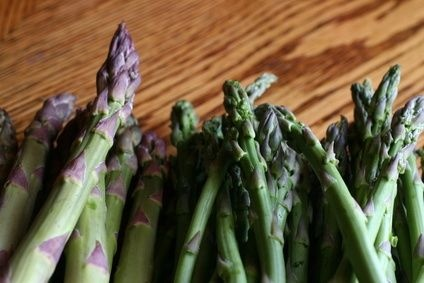 how to sow asparagus with seed
