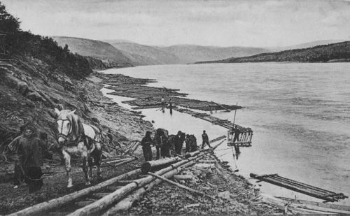 Russia, 1910s Unloading the forest on the Vitim river..: Forests, 1910Sunload, Russia, 1910S Unload, Vitim Rivers Bon, Dashboards, Start Posts, Volga Gonki