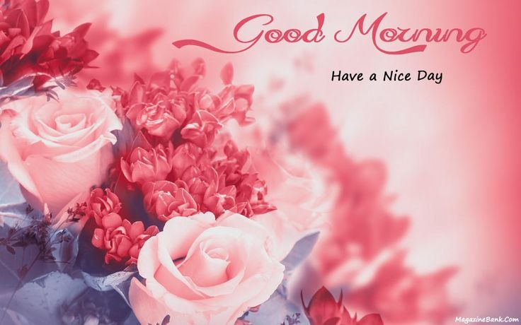 Lovely Good Morning Images and Pictures For Love Have A Nice Day | SMS Wishes Poetry
