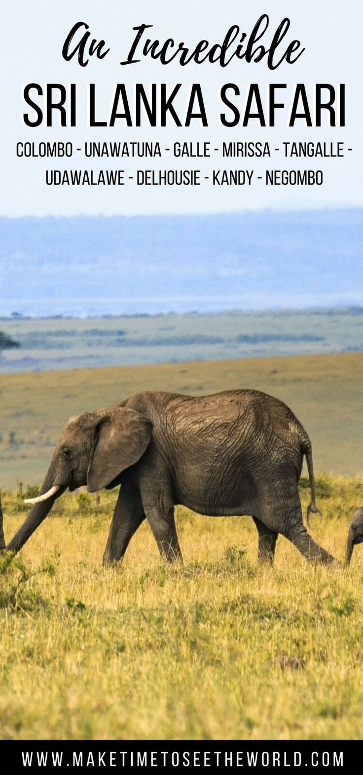 [REVIEW] Take in Sri Lanka's highlights on the Trails Asia Sri Lanka Safari - an ethical, small group adventure tour for active travelers. #SriLanka #SriLankaSafari #Colombo #Negombo #Mirissa #Kandy #AdamsPeak Sri Lanka Itinerary | Sri Lanka Travel | Kandy | Mirissa | Colombo | Negombo