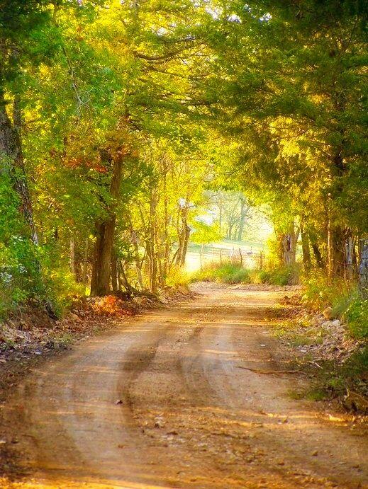 Country road (Shell Knob, Missouri)