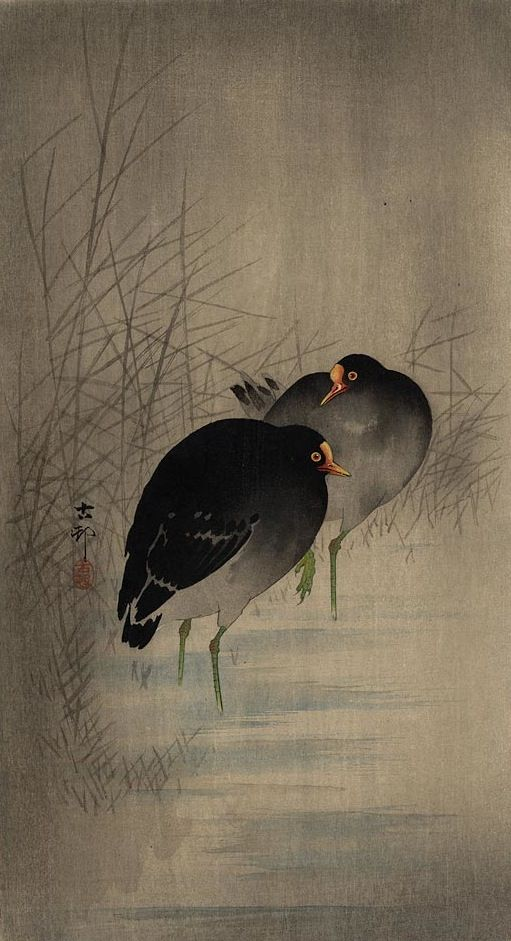 All sizes | Ohara Koson (1877-1945), 1910s, Two Gallinules in shallow water between reeds | Flickr - Photo Sharing!