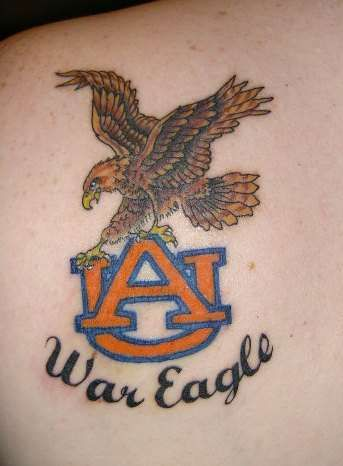 for reference:  Auburn University's mascot is the tiger