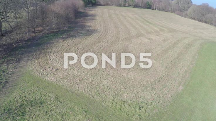 Aerial Shot Over Field In Countryside Woodland Trees Drone - Stock Footage | by RyanJonesFilms