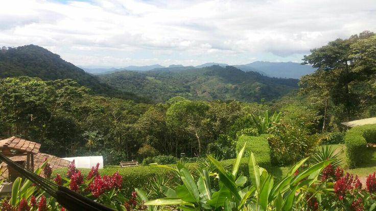 Finca Esperanza Verde, Matagalpa