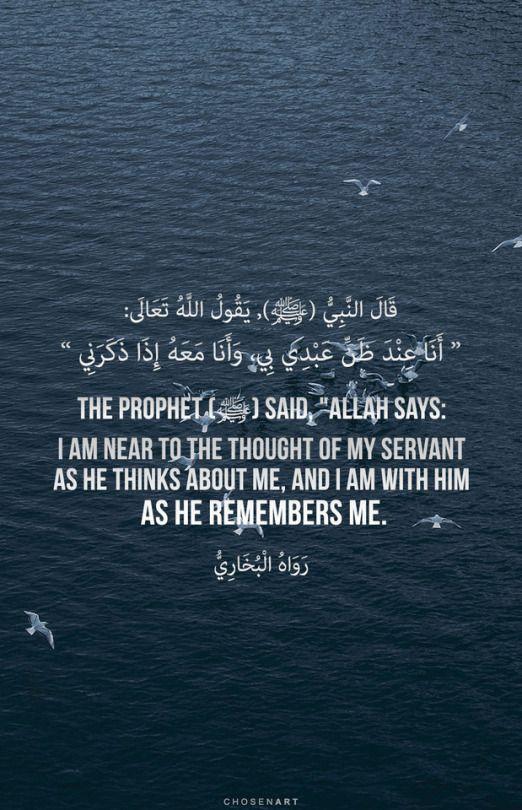 Nader Dawah | Islam Is My Deen and Jannah is My Dream | Islamic