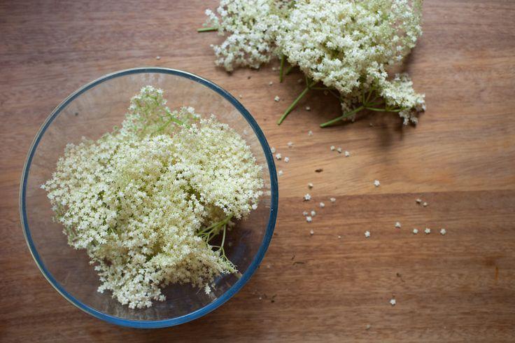How To Make Homemade Elderflower Cordial | Elderflower Cordial, How To ...