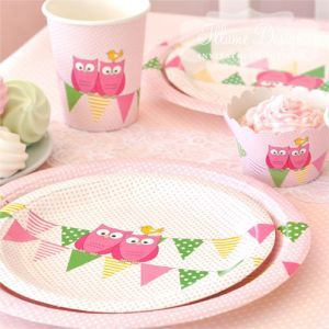 owl birthday ideas for girls | Girls Owl Theme Birthday Party Supplies-Owl Package