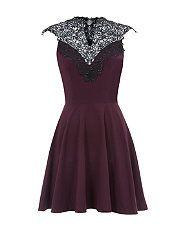 Purple (Purple) AX Paris Purple Lace High Neck Skater Dress  | 294795850 | New Look