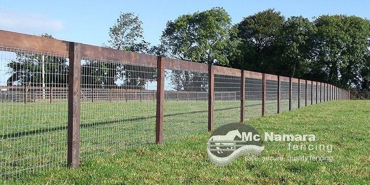 Xfence Horse Safe Mesh X Fence Horse Wire Netting Mcnamara Fencing