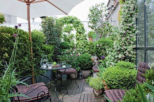 Une terrasse verte et fleurie en plein Marais - Terrasse végétalisée : mon charmant coin de verdure - CôtéMaison.fr