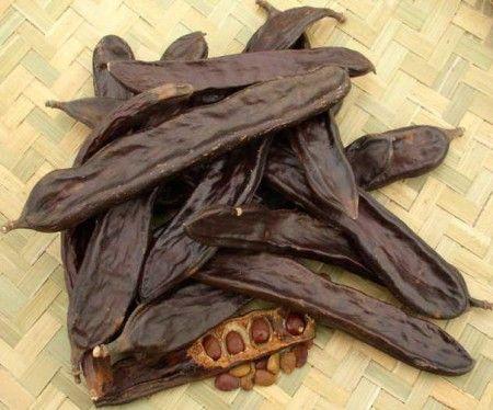 Шоколадный щербет из кэроба