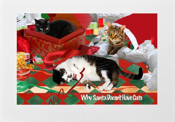 Best 25 Merry Christmas Greetings Ideas On Pinterest: 25+ Best Ideas About Cat Christmas Cards On Pinterest