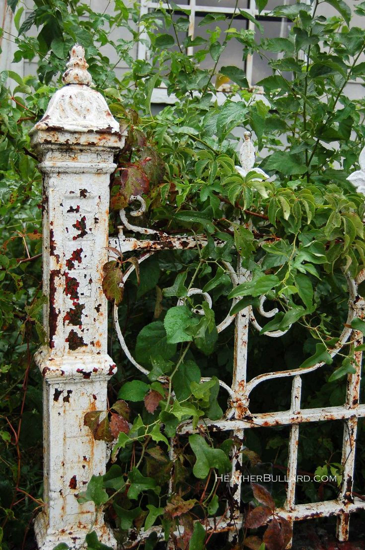 now here's a G.R.E.A.T. re-purposing idea for those old iron beds collecting dust in the attic.......they make the perfect garden trellis for a wandering vine......or even an ideal privacy fence between neighbors, or garbage containers, once the vines are established. BEST PART...they aren't wood, so NO chance for termites...♥