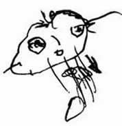 Does 4 Year Old's Drawing of a Person Indicate Developmental Delay?