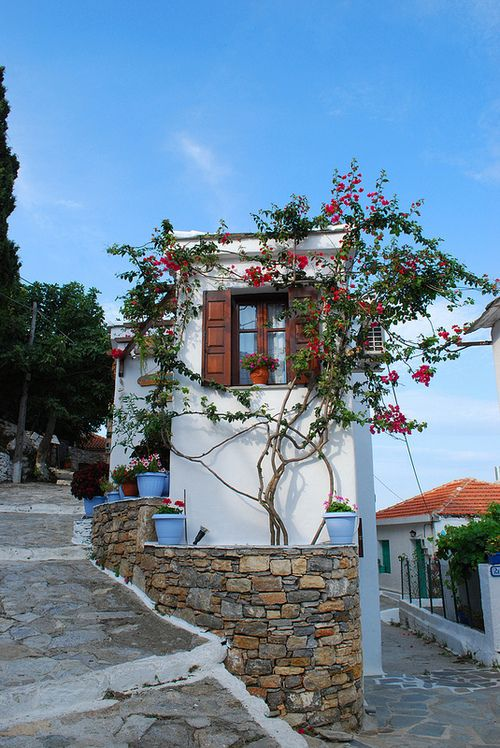 Alonisos, Greece. (by nik_m)