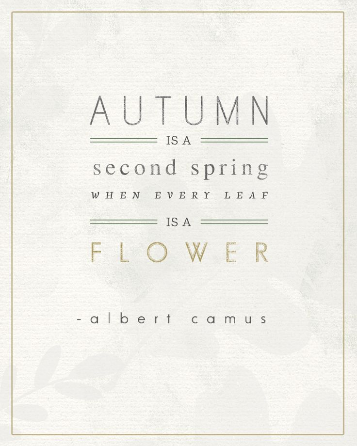 Autumn is a second spring when every leaf is a flower. ~Albert Camus